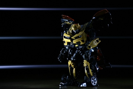 http://coldtroll.cowblog.fr/images/photos/bumblebee.jpg